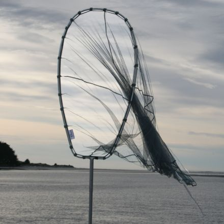 Fishfighter Whitebait Net 12' Scoop With Trap