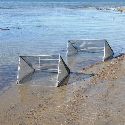Fishfighter Whitebait Net Collapsable Galvanised Frame